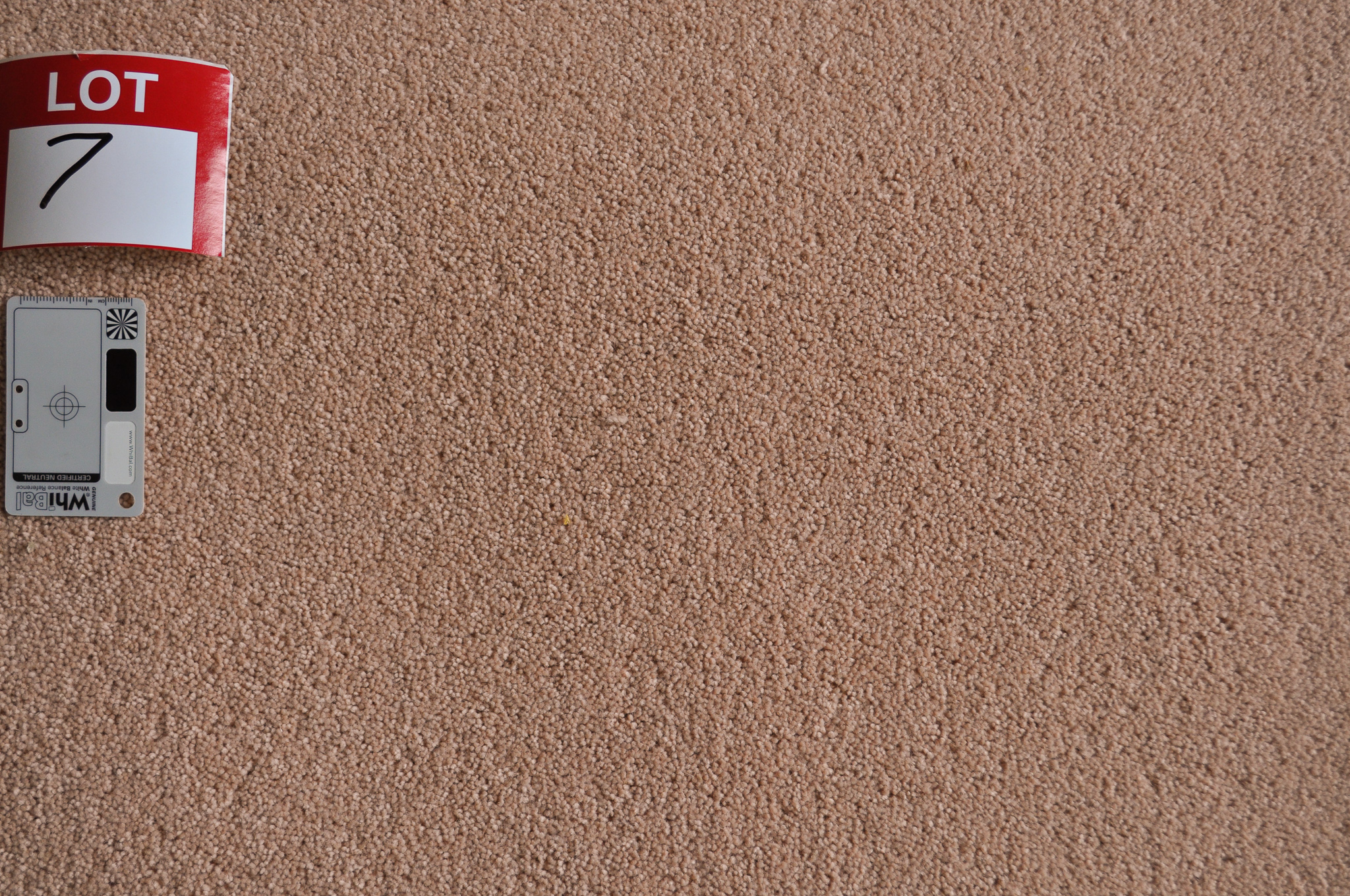 dusty pink, twist pile roll of carpet on sale at Concord Floors, it being a remnant roll in Concord Floor's warehouse.