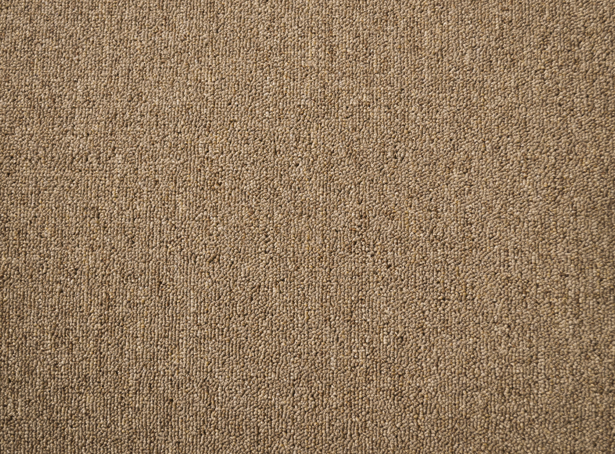 a sample of carpet of the raw umber color in the carpet range useful vallet.