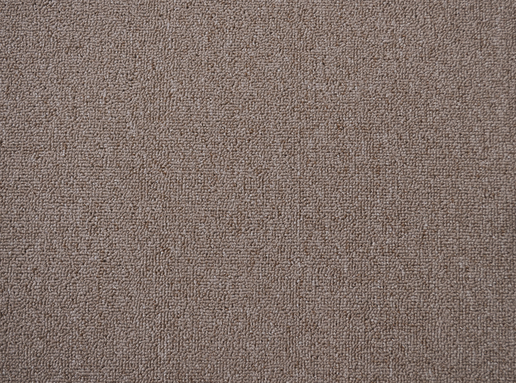 a sample of carpet of the copper color in the carpet range useful vallet.