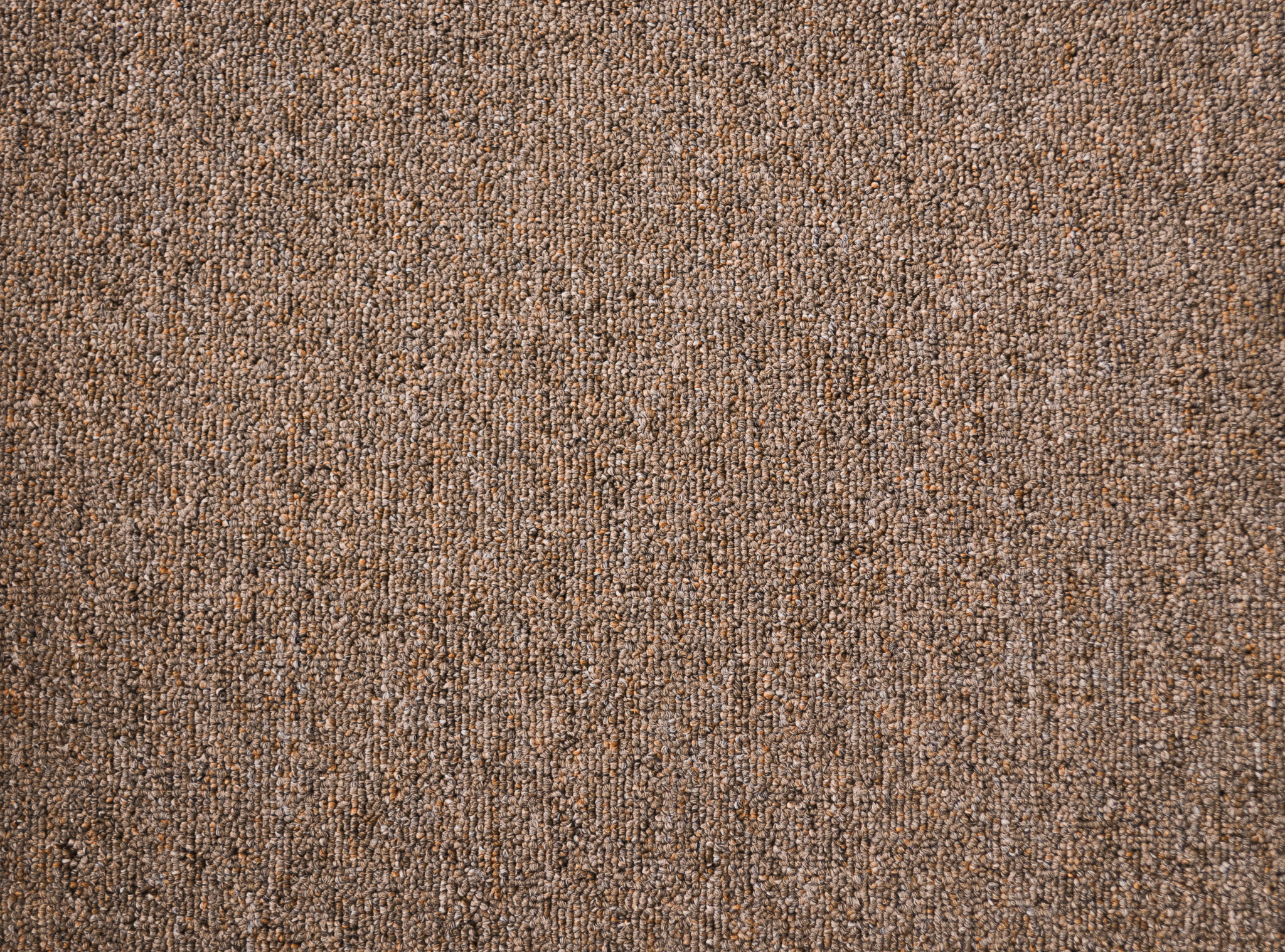 a sample of carpet of the earthen color in the carpet range useful vallet.