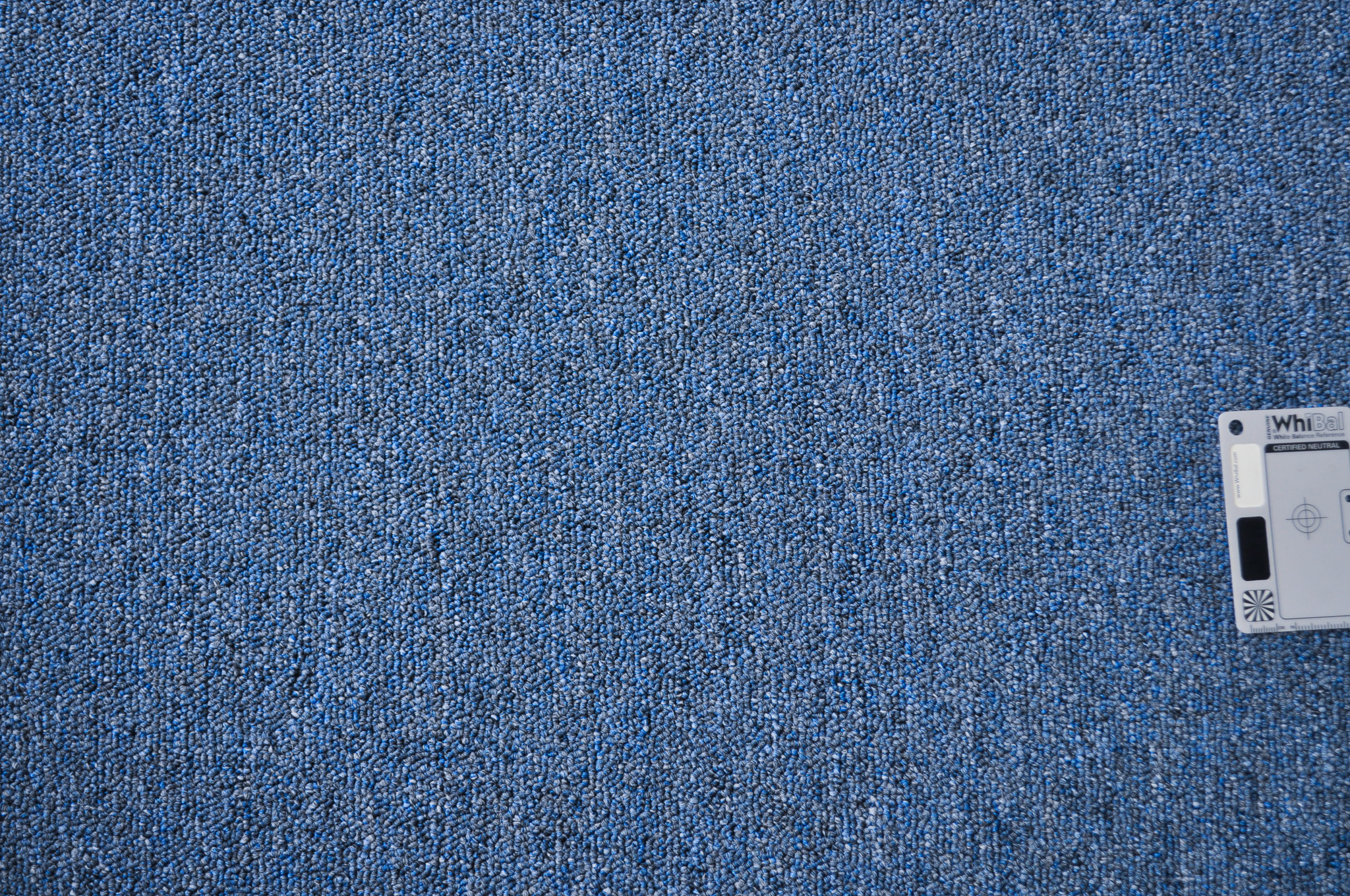 a sample of a blue colored polypropelene loop pile carpet.