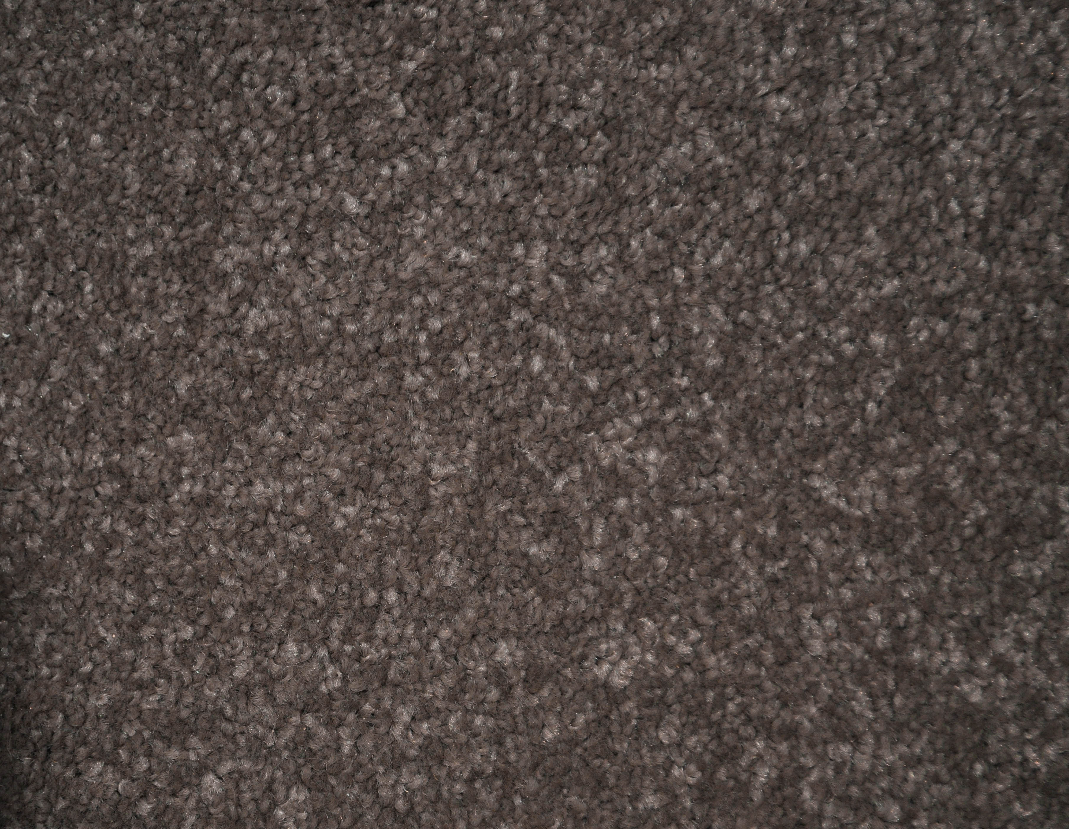 a sample of the dark beige color in the carpet range FORTRESS.