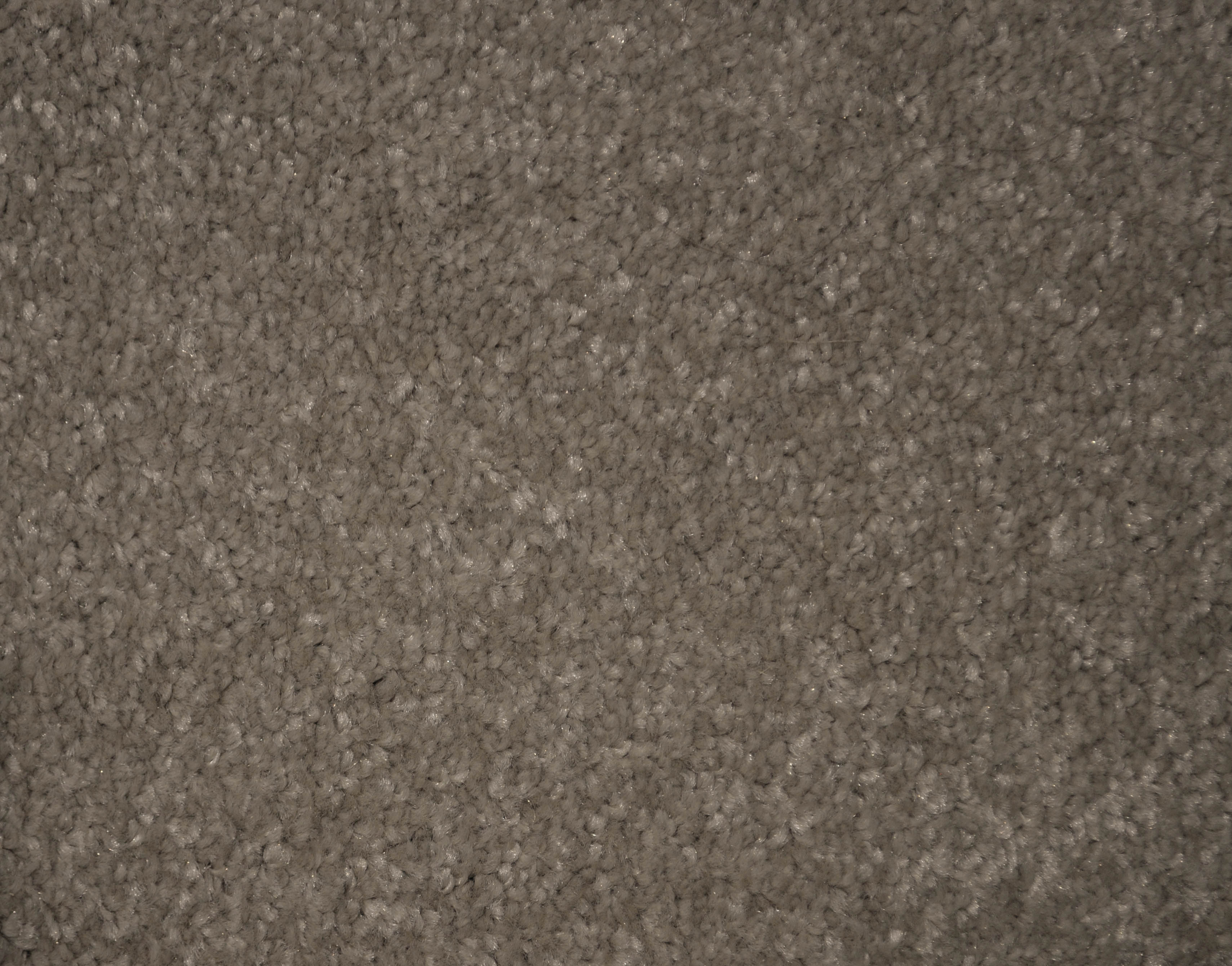 a sample of the taupe color in the carpet range FORTRESS.