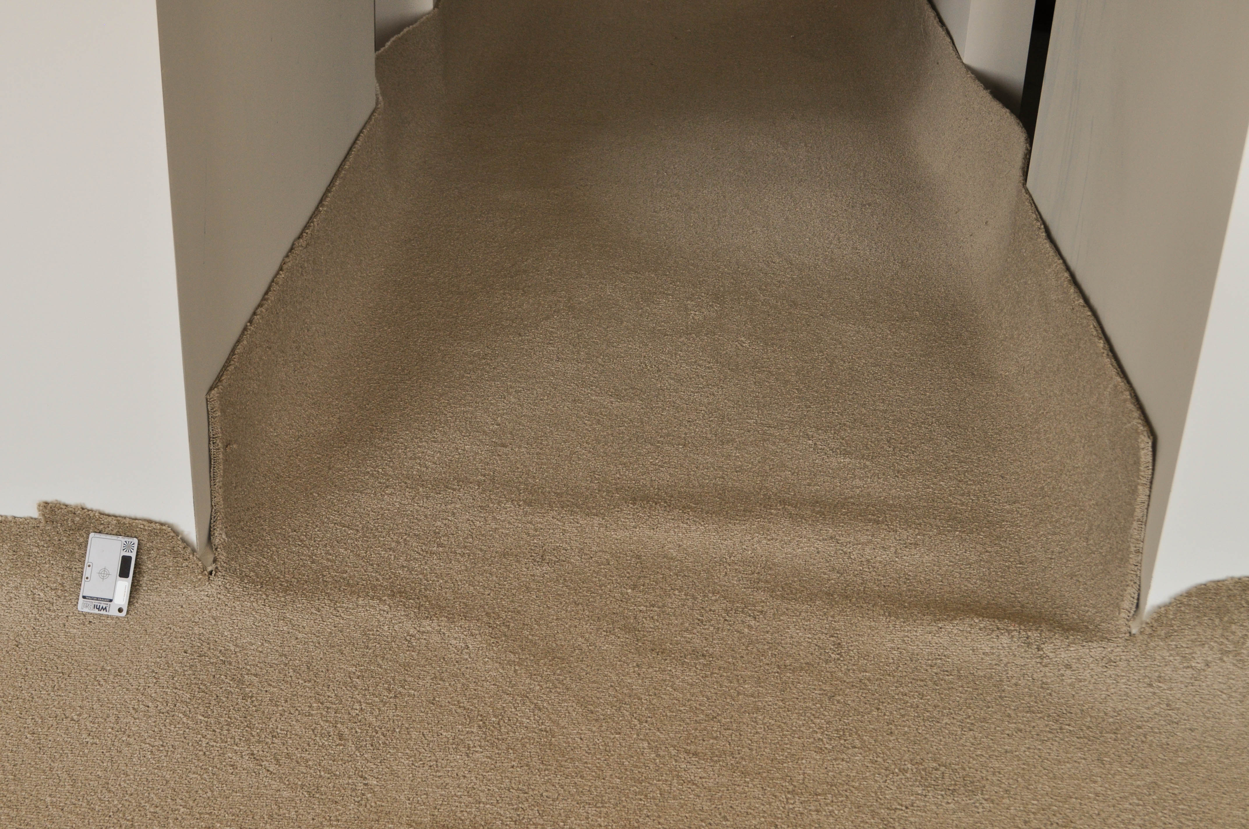 showing the floor in a lounge room and adjoining passage that has a cream colored broadloom carpet being installed on top of it.