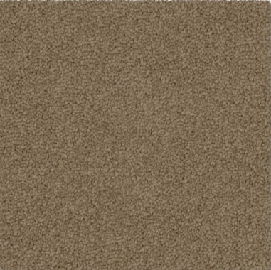 brown colored, polyester fibre, twist pile, level height carpet called SW on sale at Concord Floors.