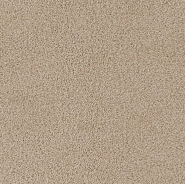 cream colored, polyesterfibre, level height pile, carpet called SW on sale at Concord Floors.