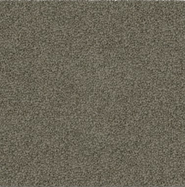 khaki colored, polyester fibre, level height pile, carpet called SW on sale at Concord Floors.