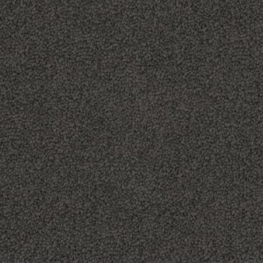 grey colored, polyester fibre, level height pile, carpet called SW on sale at Concord Floors.