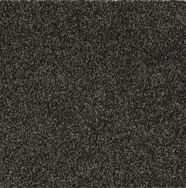 charcoal colored, polyester fibre,  level height pile, carpet called SW on sale at Concord Floors.